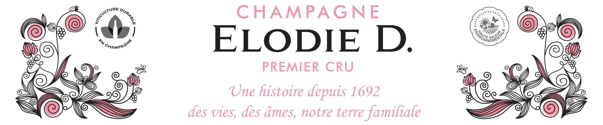 Elodie D. Champagne